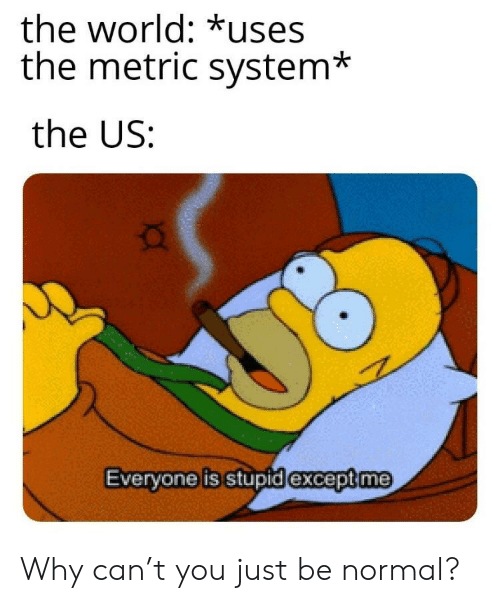 metric: the world: *uses  the metric system*  the US:  exceptme  Evervone is stupidi Why can't you just be normal?