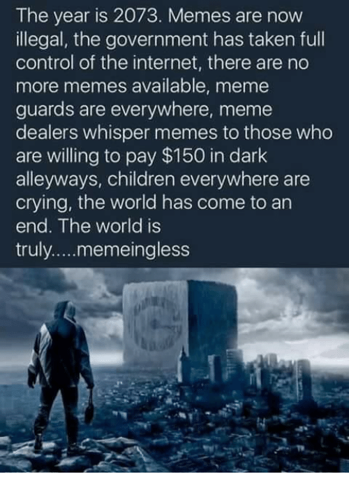 Everywhere Meme: The year is 2073. Memes are now  illegal, the government has taken full  control of the internet, there are no  more memes available, meme  guards are everywhere, meme  dealers whisper memes to those who  are willing to pay $150 in dark  alleyways, children everywhere are  crying, the world has come to an  end. The world is