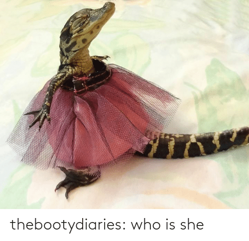 she: thebootydiaries:  who is she