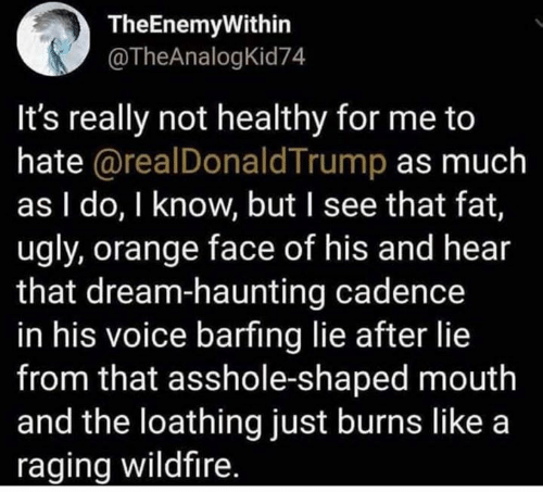Barfing: TheEnemyWithin  @TheAnalogKid74  It's really not healthy for me to  hate @realDonaldTrump as much  as I do, I know, but I see that fat,  ugly, orange face of his and hear  that dream-haunting cadence  in his voice barfing lie after lie  from that asshole-shaped mouth  and the loathing just burns like a  raging wildfire.