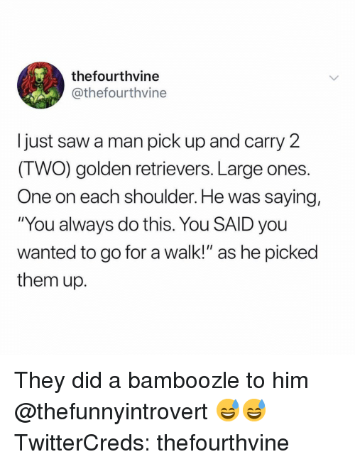 """Funny, Saw, and Wanted: thefourthvine  @thefourthvine  I just saw a man pick up and carry 2  (TWO) golden retrievers. Large ones.  One on each shoulder. He was saying,  """"You always do this. You SAID you  wanted to go for a walk!"""" as he picked  them up. They did a bamboozle to him @thefunnyintrovert 😅😅 TwitterCreds: thefourthvine"""