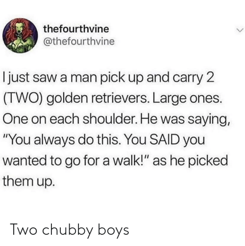 "Saw, Boys, and Wanted: thefourthvine  @thefourthvine  I just saw a man pick up and carry 2  (TWO) golden retrievers. Large ones.  One on each shoulder. He was saying,  ""You always do this. You SAID you  wanted to go fora walk!"" as he picked  them up. Two chubby boys"