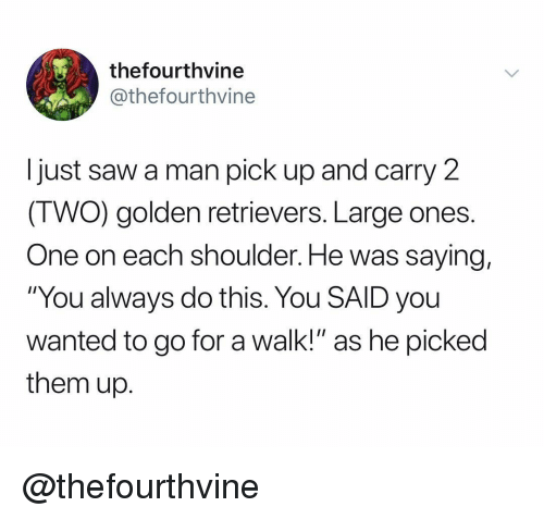 """Saw, Dank Memes, and Wanted: thefourthvine  @thefourthvine  Ijust saw a man pick up and carry 2  (TWO) golden retrievers. Large ones.  One on each shoulder. He was saying,  """"You always do this. You SAID you  wanted to go for a walk!"""" as he picked  them up. @thefourthvine"""