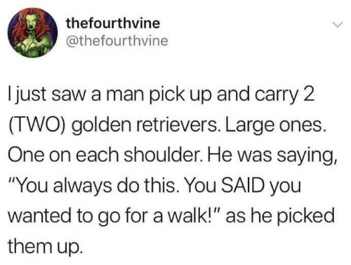 "Saw, Wanted, and One: thefourthvine  @thefourthvine  Ijust saw a man pick up and carry 2  (TWO) golden retrievers. Large ones.  One on each shoulder. He was saying,  ""You always do this. You SAID you  wanted to go for a walk!"" as he picked  them up."