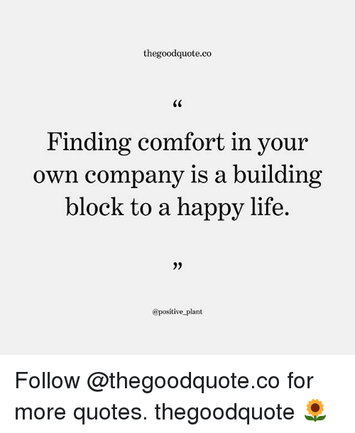 comfortability: thegoodquote.co  Finding comfort in your  own company is a building  block to a happy life.  @positive plant Follow @thegoodquote.co for more quotes. thegoodquote 🌻