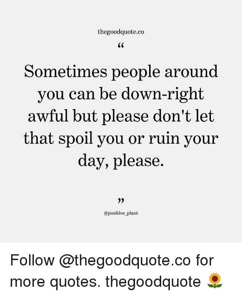 Memes, Quotes, and 🤖: thegoodquote.co  Sometimes people around  you can be down-right  awful but please don't let  that vour  spoil you or ruin  day, please  0)  @positive_plant Follow @thegoodquote.co for more quotes. thegoodquote 🌻