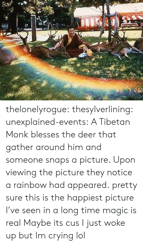 Crying, Deer, and Lol: thelonelyrogue: thesylverlining:  unexplained-events:  A Tibetan Monk blesses the deer that gather around him and someone snaps a picture. Upon viewing the picture they notice a rainbow had appeared.  pretty sure this is the happiest picture I've seen in a long time  magic is real   Maybe its cus I just woke up but Im crying lol