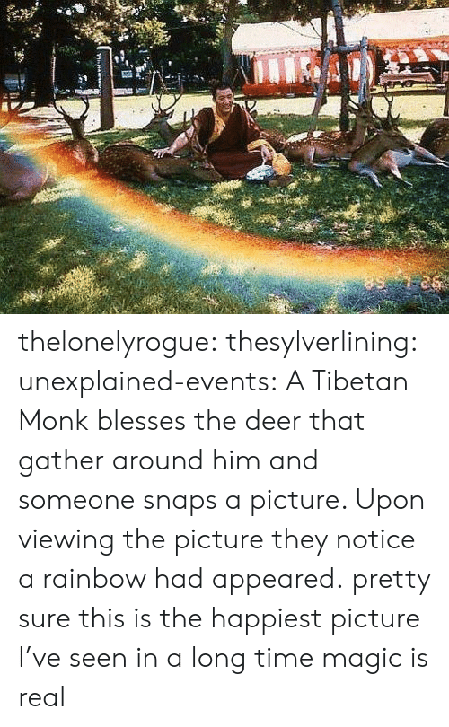 Deer, Target, and Tumblr: thelonelyrogue: thesylverlining:  unexplained-events:  A Tibetan Monk blesses the deer that gather around him and someone snaps a picture. Upon viewing the picture they notice a rainbow had appeared.  pretty sure this is the happiest picture I've seen in a long time  magic is real