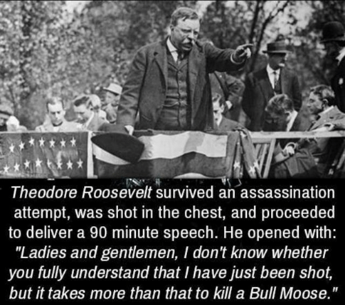 """Assassination: Theodore Roosevelt survived an assassination  attempt, was shot in the chest, and proceeded  to deliver a 90 minute speech. He opened with:  """"Ladies and gentlemen, I don't know whether  you fully understand that I have just been shot,  but it takes more than that to kill a Bull Moose."""""""