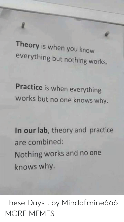 Practice: Theory is when you know  everything but nothing works.  Practice is when everything  works but no one knows why.  In our lab, theory and practice  are combined:  Nothing works and no one  knows why. These Days.. by Mindofmine666 MORE MEMES