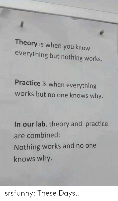 Practice: Theory is when you know  everything but nothing works.  Practice is when everything  works but no one knows why.  In our lab, theory and practice  are combined:  Nothing works and no one  knows why. srsfunny:  These Days..