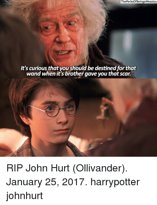 ollivander: ThePerksOf BeingaWeasley  It's curious that you should be destined forthat  wand when it's brother gave you that scar. RIP John Hurt (Ollivander). January 25, 2017. harrypotter johnhurt