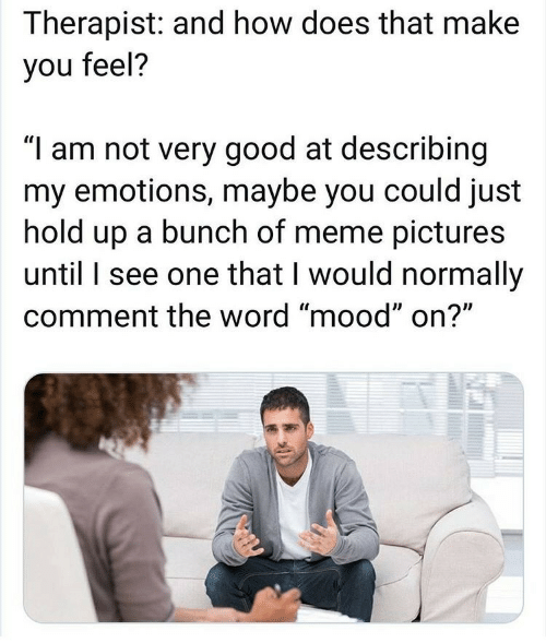 "And How: Therapist: and how does that make  you feel?  ""I am not very good at describing  my emotions, maybe you could just  hold up a bunch of meme pictures  until I see one that I would normally  comment the word ""mood"" on?"""