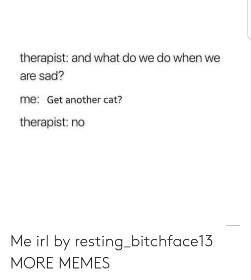 Dank, Memes, and Target: therapist: and what do we do when we  are sad?  me: Get another cat?  therapist: no Me irl by resting_bitchface13 MORE MEMES