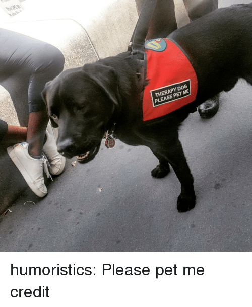 Reddit, Target, and Tumblr: THERAPY DOG  PLEASE PET ME humoristics: Please pet me credit