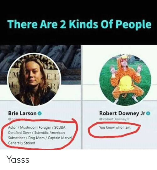 Robert Downey Jr., American, and Marvel: There Are 2 Kinds Of People  CM  EI  Brie Larson  Robert Downey Jr  RobertDowneyr  Actor/Mushroom Forager/SCUBA  You know who I am  Certified Diver/Scientific American  Subscriber/ Dog Mom/Captain Marvel  Generally Stoked Yasss