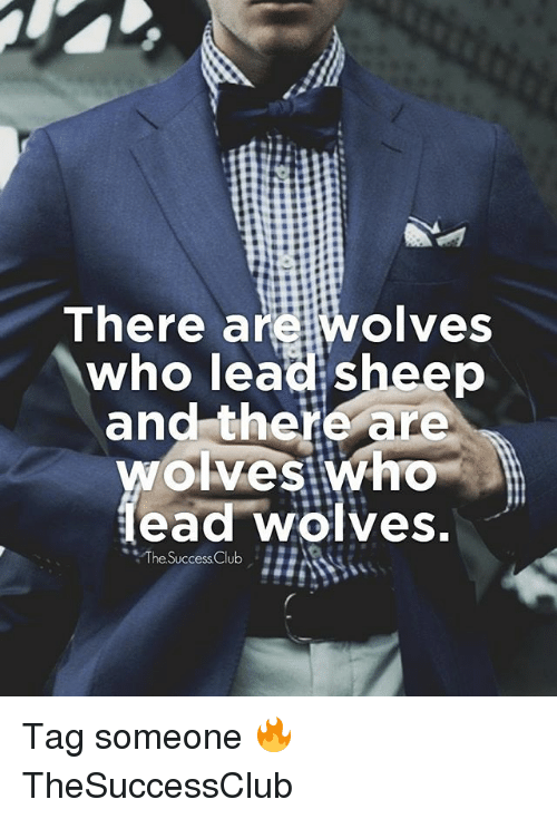 "Memes, Tag Someone, and Wolves: There are wolves  who lead sheep  and there are  ead wölves  ""The.SuccessClub Tag someone 🔥 TheSuccessClub"