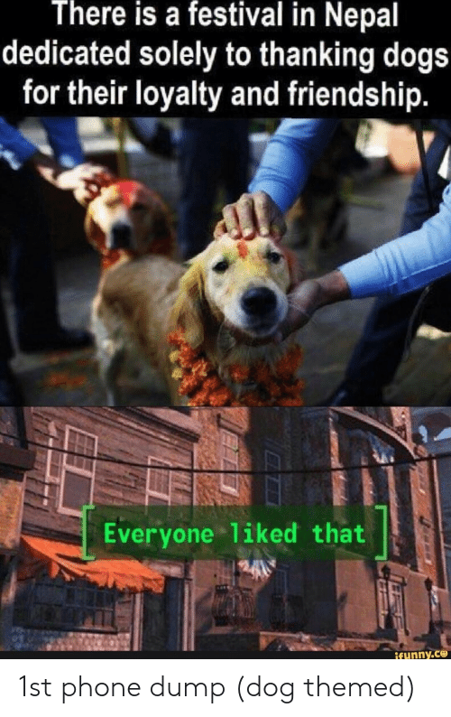 Dogs, Phone, and Nepal: There is a festival in Nepal  dedicated solely to thanking dogs  for their loyalty and friendship.  Everyone 1iked that  ifunny.ce 1st phone dump (dog themed)