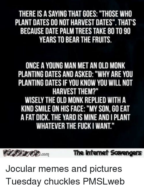 "Memes, Bear, and Date: THERE IS A SAYING THAT GOES: ""THOSE WHO  PLANT DATES DO NOT HARVEST DATES"". THAT'S  BECAUSE DATE PALM TREES TAKE 80 TO 90  YEARS TO BEAR THE FRUITS  ONCE A YOUNG MAN MET AN OLD MONK  PLANTING DATES AND ASKED: ""WHY ARE YOU  PLANTING DATES IF YOU KNOW YOU WILL NOT  HARVEST THEM?""  WISELY THE OLD MONK REPLIED WITH A  KIND SMILE ON HIS FACE:""MY SON, GO EAT  A FAT DICK. THE YARD IS MINE AND I PLANT  WHATEVER THE FUCKI WANT.""  The htenet Scavengars  com <p>Jocular memes and pictures  Tuesday chuckles  PMSLweb </p>"
