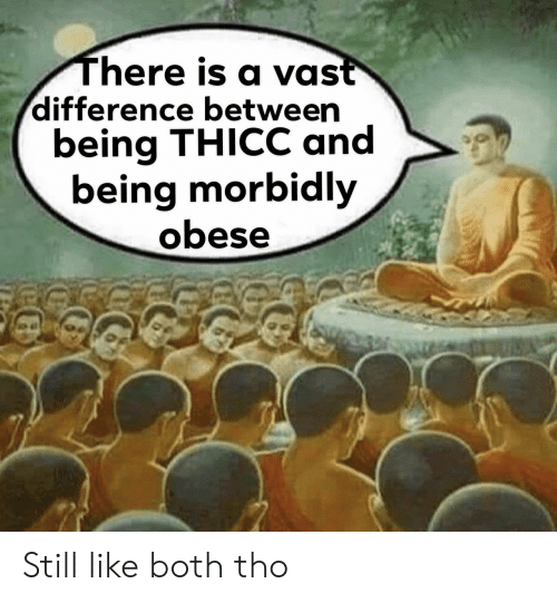 Vast, Still, and Thicc: There is a vast  difference between  being THICC and  being morbidly  obese Still like both tho