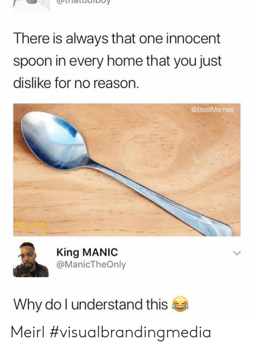 Home, Reason, and MeIRL: There is always that one innocent  spoon in every home that you just  dislike for no reason.  @BestMemes  King MANIC  @ManicTheOnly  Why do I understand this Meirl #visualbrandingmedia