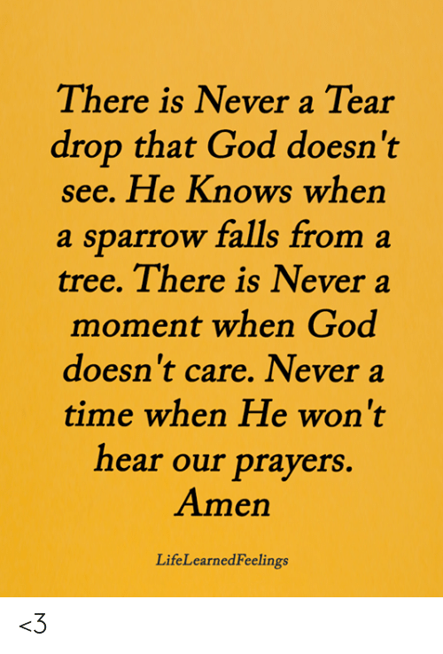 God, Memes, and Time: There is Never a Tear  drop that God doesn't  see. He Knows when  a sparrow falls from a  tree. There is Never a  moment when God  doesn't care. Never a  time when He won't  hear our prayers.  Amen  LifeLearnedFeelings <3