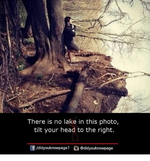 lakings: There is no lake in this photo,  tilt your head to the right.  団/didyouknowpage!  @d.dyouknowpage