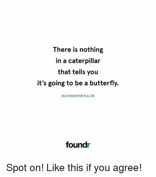 Memes, Butterfly, and Buckminster Fuller: There is nothing  in a caterpillar  that tells you  it's going to be a butterfly.  BUCKMINSTER FULLER  foundr Spot on! Like this if you agree!