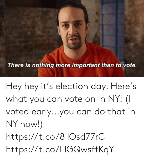 election: There is nothing more important than to vote. Hey hey it's election day. Here's what you can vote on in NY! (I voted early...you can do that in NY now!) https://t.co/8lIOsd77rC https://t.co/HGQwsffKqY