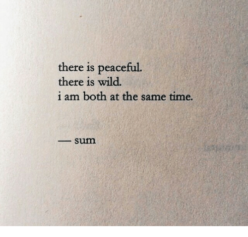 Time, Wild, and Sum: there is peaceful.  there is wild.  i am both at the same time.  _sum