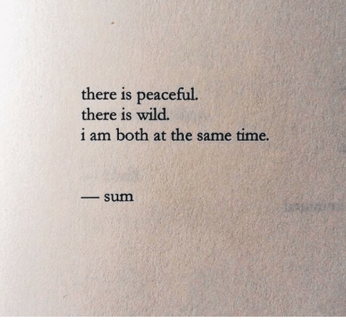 Time, Wild, and Sum: there is peaceful.  there is wild.  i am both at the same time.  _ sum