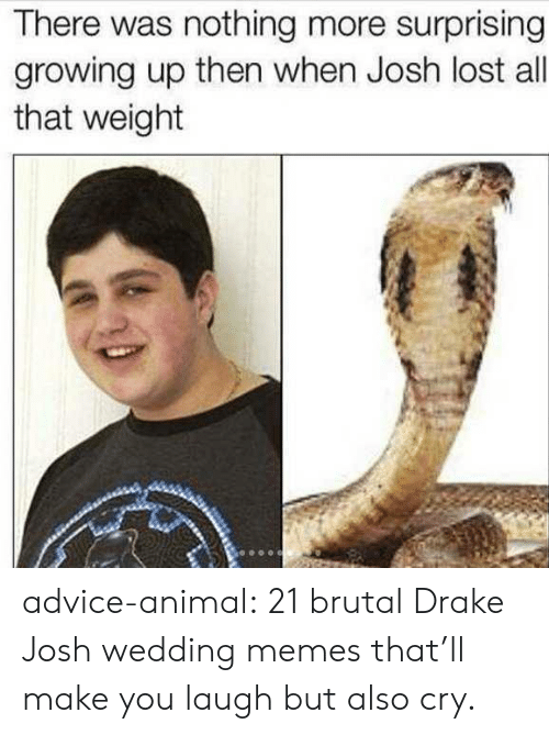 Advice, Drake, and Drake & Josh: There was nothing more surprising  growing up then when Josh lost all  that weight advice-animal:  21 brutal Drake  Josh wedding memes that'll make you laugh but also cry.