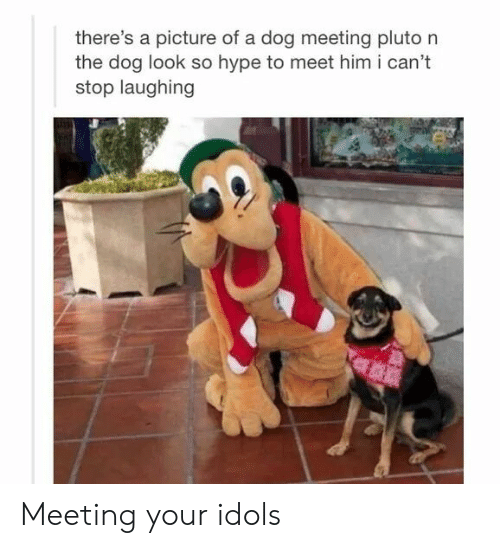 Hype, Pluto, and A Picture: there's a picture of a dog meeting pluto n  the dog look so hype to meet him i can't  stop laughing Meeting your idols