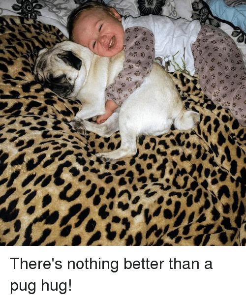 Pugly: There's nothing better than a pug hug!