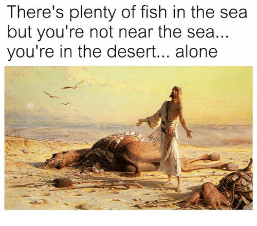 25 best memes about fish in the sea fish in the sea memes for Plenty of fish in the sea
