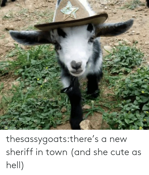 town: thesassygoats:there's a new sheriff in town (and she cute as hell)