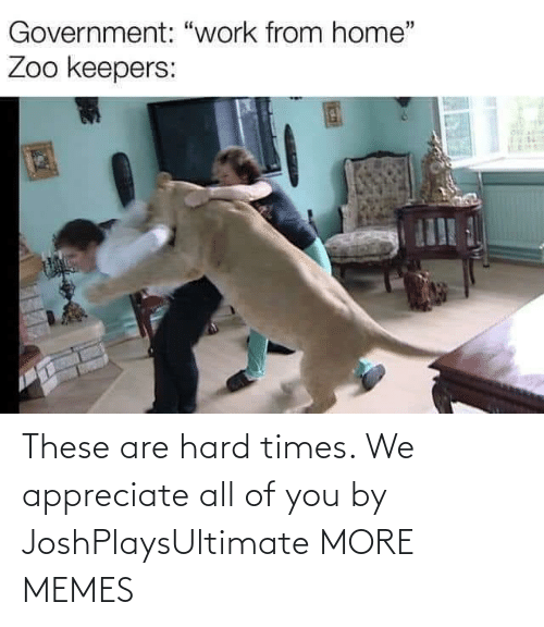 hard times: These are hard times. We appreciate all of you by JoshPlaysUltimate MORE MEMES