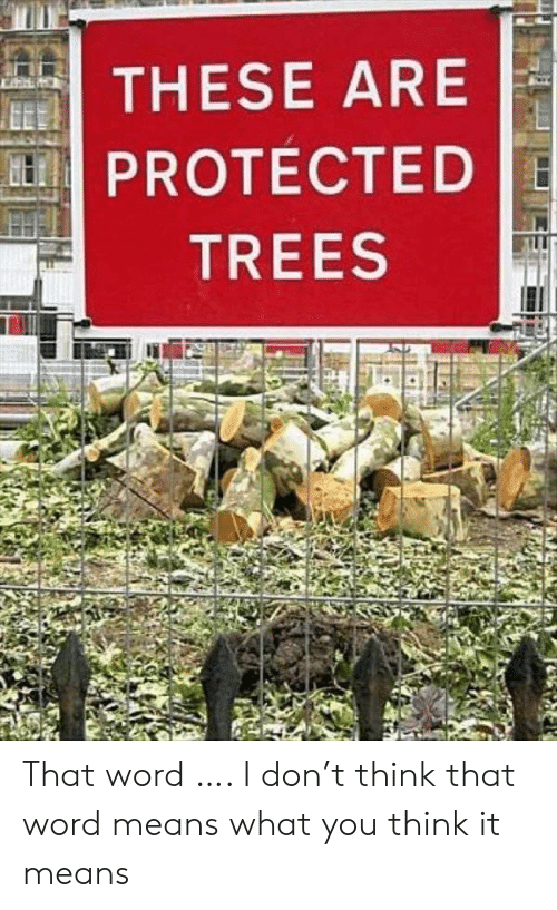 Trees, Word, and Don: THESE ARE  PROTECTED  TREES That word …. I don't think that word means what you think it means