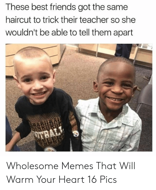 Friends, Haircut, and Memes: These best friends got the same  haircut to trick their teacher so she  wouldn't be able to tell them apart  es Wholesome Memes That Will Warm Your Heart 16 Pics