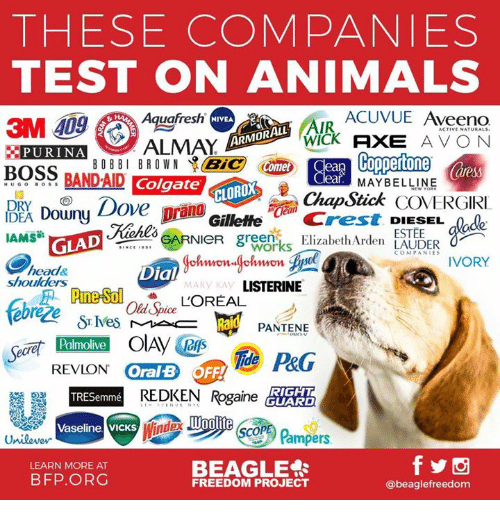 Animals, Avon, and Dove: THESE COMPANIES  TEST ON ANIMALS  Aquafresh  ACUVUE Aveeno  NIVEA  AIR  Acr  WICk AXE AVON  Himnane  MAYBELLINE  ChapStick COVERGIRI  ARMORALL  EPURINAALMAY  BOSS BAND-AD ColgateChapStick COG  BOBBI BROWN 、 Bie (an  Comeb Cean  UGO B0sS  Downy Dove  DRY  GilletteCrest DIESEL  greenElizabethArden LAUDER  ESTEE  IAMS  GLAD  wor  head&  shoulders  Dia  MARY KA  LISTERINE  Old Spice  PANTENE  Palmolive  REVION Oral B  REDKEN Rgainedytt  RIGHT  TRESemmé  Vaseline VICKS  Pampers  BEAGLE郻  LEARN MORE AT  BFP.ORG  FREEDOM PROJECT  @beaglefreedom