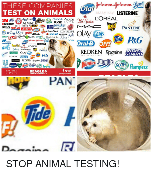 Animals, Head, and Listerine: THESE COMPANIES  TEST ON ANIMALS  ial  MARy KAY  LISTERINE  Aquafresh  ACUVUE Aveeno  NIVEA  AIR  WICK AXE A V ON  ARMOR ALL  PURINAALMAY  Ra  BOBBI BROWN BİC) (  Colgate  PANTENE  MAYBELLINE  CLOROX  PRO-V  DEA Donyov pranu lleeCres DIE  IAMAS齡GAD eseeRNieR greghe Elizabeth Arden ESTEDER  ijs  CONANISVORY  head&  shoulders  Dial  Oral B OFF!  MARy KAY  LISTERINE  REDKEN Rogaine A  RIGHT  GUARD  IAT  PANTENE  Woolite  TRESemmé  Cop  cO Pampers  Vaseline VICKS  Unilever  Pampers  BEAGLE  FREEDOM PROJECT  LEARN MORE AT  BFP.ORG  @beaglefreedom  PAN  ide  Dinn R STOP ANIMAL TESTING!