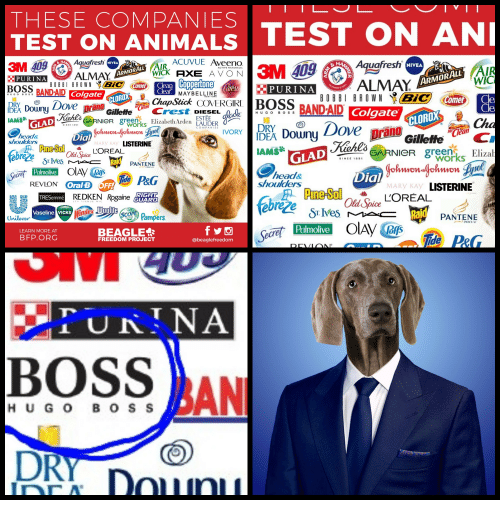 Animals, Avon, and Dove: THESE COMPANIES  TEST ON ANIMALS TEST ON AN  ACUVUE Aveeno  3M 409 Aquafresh  BOSS BANDAID  DE Douny Dove prano  Aquafresh  NIVEA  NIVEA  ALMAY  WICk AXE AVON  ertone  ALMAY  WIC  PURINA  Colgate OROX  MAYBELINE  ChapStick COVERGIRI  I BROWN  Comeb Cle  BANDAID Colgate  DRYGo  BAND-AID  IAMS  CLOROX  SARNIeR 8rorks ElizabethArden LAUDER  DEA Dony Dove prano  IAMS  Sol  COMPANIES  won  head&  shoulders  ia  Gillette , C.  LISTERINE  A Pne-Sol  MARY KAY  LOREAL  GARNIeR greenksElizal  GLAD  SINCE 185  @ PG  head&  shoulders  Dial  REVLON ONe  Oral B OFF!  LISTERINE  REDKEN Rogaine  LOREAL  TRESemmé  Old Spice  TH AVENUENYC  Vaseline VICKS  Unilever  COPE  Pampers  PANTENE  LEARN MORE AT  BFP.ORG  BEAGLE  ecre  Palmolive  FREEDOM PROJECT  @beaglefreedom  BOSS AN  H U G O B O SS