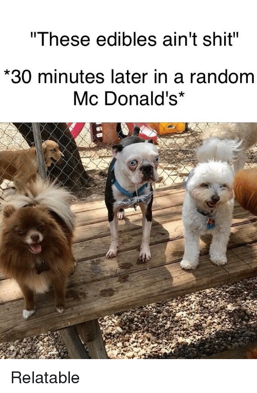 These Edibles Ain't Shit 30 Minutes Later in a Random Mc Donald's