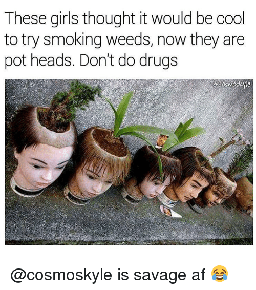 Af, Drugs, and Girls: These girls thought it would be cool  to try smoking weeds, now they are  pot heads. Don't do drugs @cosmoskyle is savage af 😂