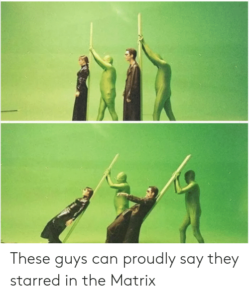 starred: These guys can proudly say they starred in the Matrix