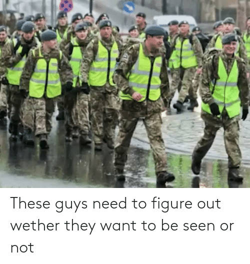figure out: These guys need to figure out wether they want to be seen or not