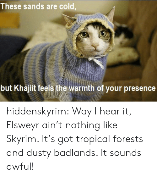 sands: These sands are cold,  but Khajiit feels the warmth of your presence hiddenskyrim:     Way I hear it, Elsweyr ain't nothing like Skyrim. It's got tropical forests and dusty badlands. It sounds awful!