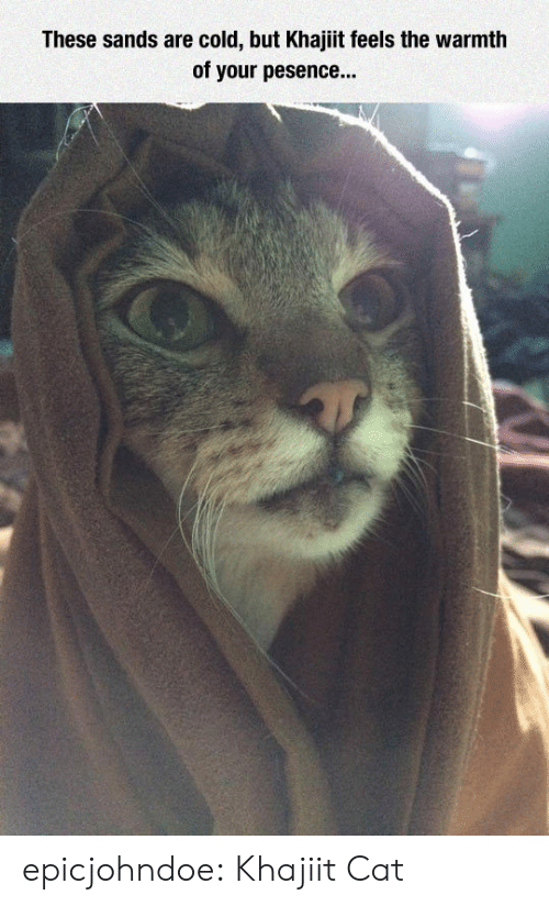sands: These sands are cold, but Khajiit feels the warmth  of your pesence... epicjohndoe:  Khajiit Cat