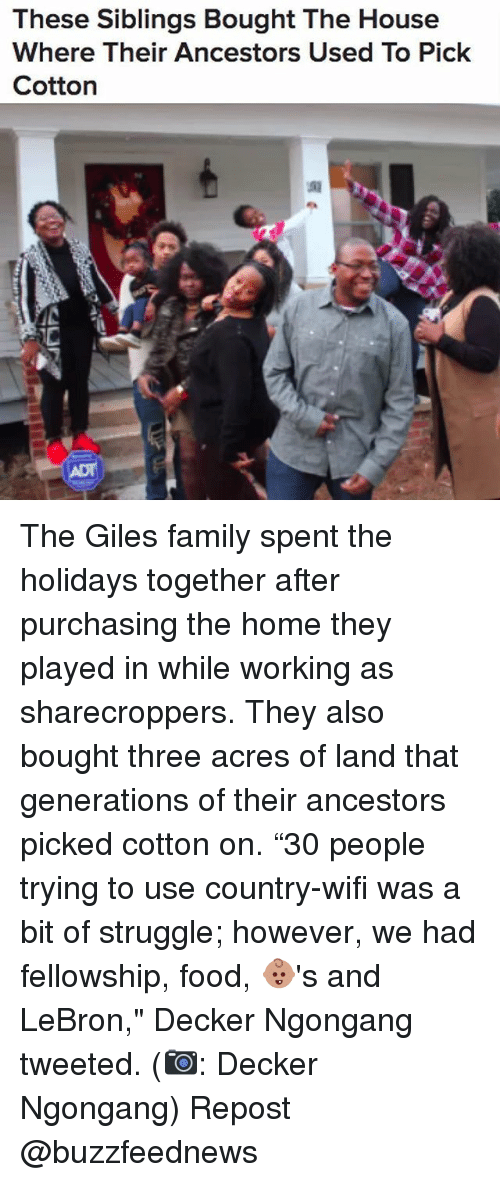 """Family, Food, and Memes: These Siblings Bought The House  Where Their Ancestors Used To Pick  Cotton The Giles family spent the holidays together after purchasing the home they played in while working as sharecroppers. They also bought three acres of land that generations of their ancestors picked cotton on. """"30 people trying to use country-wifi was a bit of struggle; however, we had fellowship, food, 👶🏽's and LeBron,"""" Decker Ngongang tweeted. (📷: Decker Ngongang) Repost @buzzfeednews"""