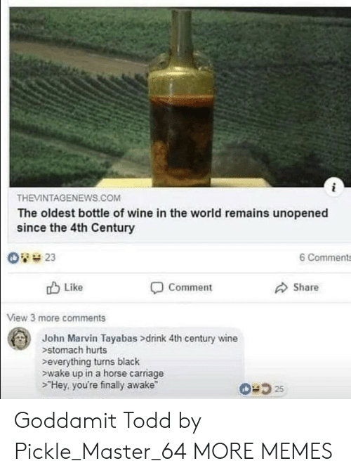 """Remains: THEVINTAGENEWS.COM  The oldest bottle of wine in the world remains unopened  since the 4th Century  6 Comments  Like  Comment  Share  View 3 more comments  John Marvin Tayabas >drink 4th century wine  stomach hurts  everything turns black  ewake up in a horse carriage  >""""Hey, you're finally awake"""" Goddamit Todd by Pickle_Master_64 MORE MEMES"""